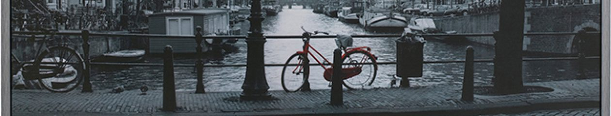 Bicycle Sales and Service, Bicycle Tune -ups, Bicycle rentals, E-Bike Sales and Service